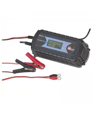 12V-7.2A/24V-3.6A 9 State Charger